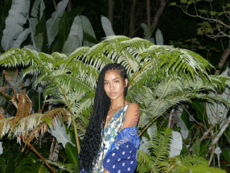 Jhené-Aiko-ft-Big-Sean-None-of-Your-Concern