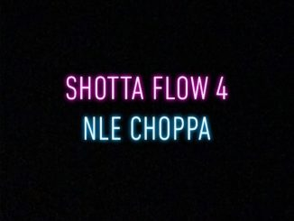 NLE-Choppa-Shotta-Flow-4