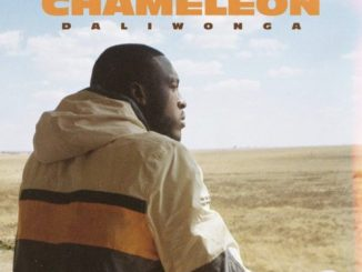 DOWNLOAD Daliwonga Chameleon ZIP & MP3 File