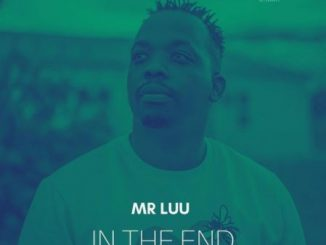 Mr Luu In The End Mp3 Download Audio