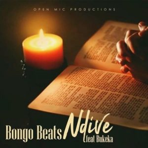 Bongo Beats Ndive Mp3 Download Audio