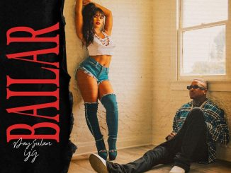 Day Sulan Bail Mp3 Download Audio