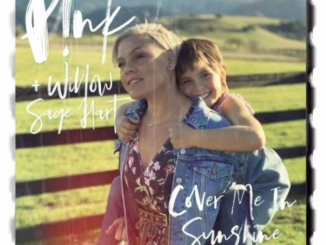 P!nk Cover Me In Sunshine Mp3 Download Audio