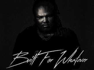 DOWNLOAD Tee Grizzley Built For Whatever ZIP & MP3 File